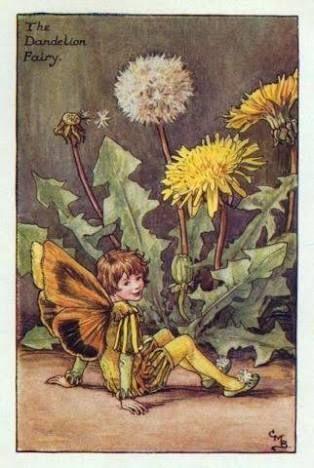 シシリー・メアリー・バーカーの画像 p1_19