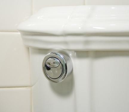 Eco Eco.. Dual flush!!