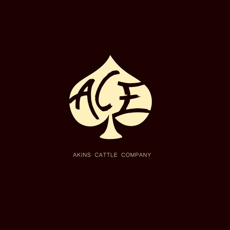 Ace Akins Net Worth