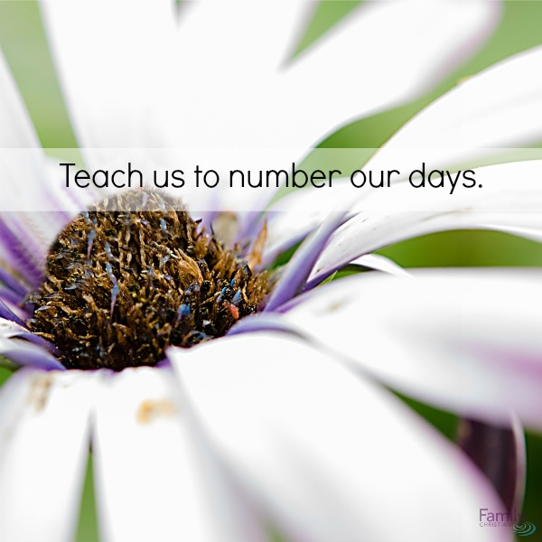 Teach us to number our days. | Every Day Of The Week | Pinterest