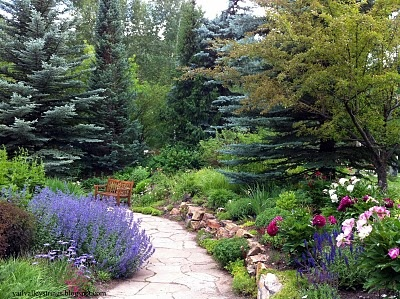 betty ford alpine gardens in vail co visited the store in vail. Cars Review. Best American Auto & Cars Review