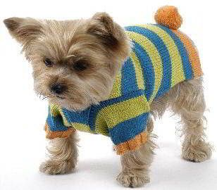 Knitting Pattern Central Dog Sweaters : Dog Sweater Free Knit Pattern Free Patterns Dog Breeds ...