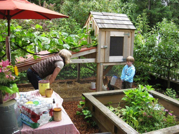 Hipster Backyard Chickens : tiny coop and run on the cheap  Small Space CoopGardenGoat set up