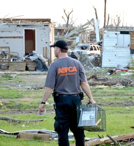 ASPCA responders, including one pictured here in Joplin in 2011, provide relief to animals across the country.