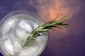 Rosemary Refresher Cocktail Recipe | Mixology | Pinterest