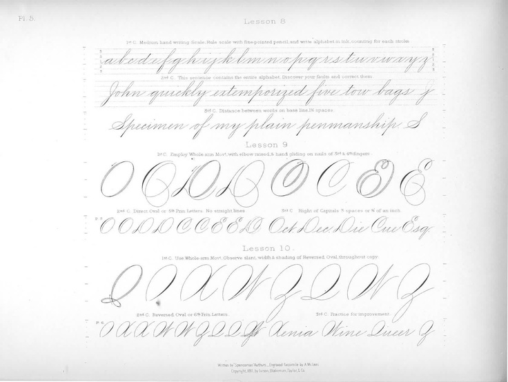 Spencerian Script Calligraphy And Hand Lettering Pinterest