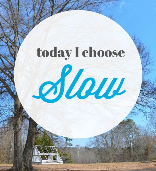 I Choose Slow - because that IS part of Balance!! Loved this post. It shows what real life is all about.