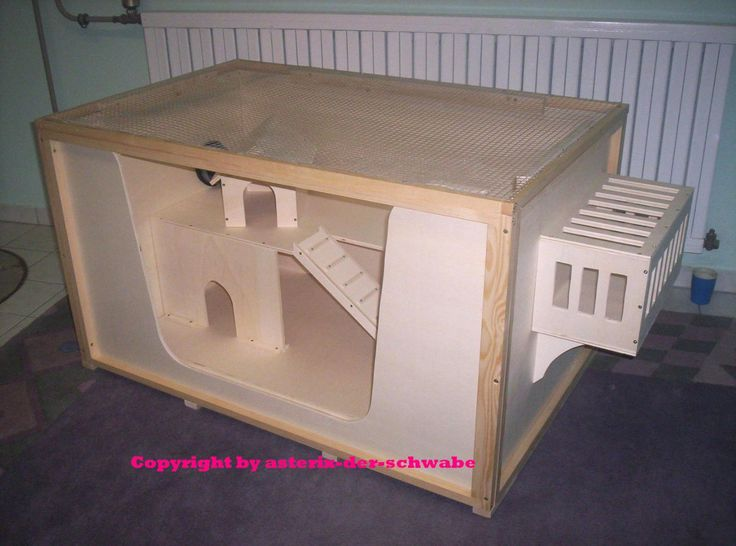 pin by kilynn heinrichs on guinea pig enclosures pinterest