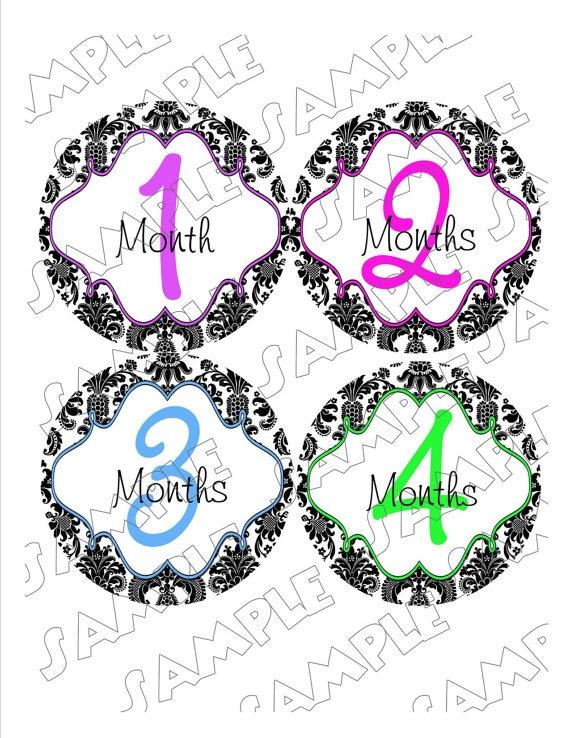 Damask Monthly Onesie Stickers Girl Elegant