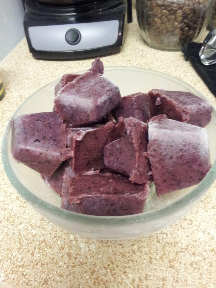 Blueberry Frozen Puppy Pops | vegan food for pups | Pinterest