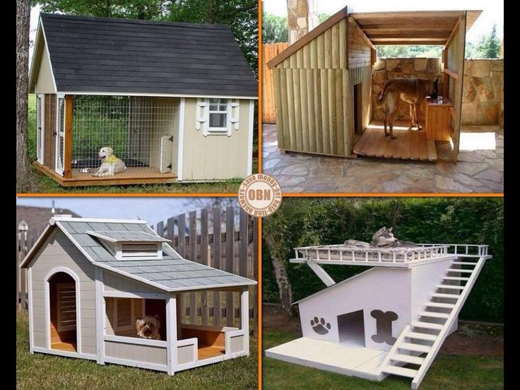 dog house ideas animal house pinterest