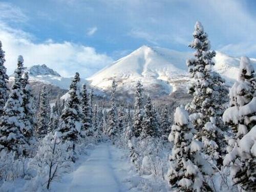 wilderness holidays nunavut