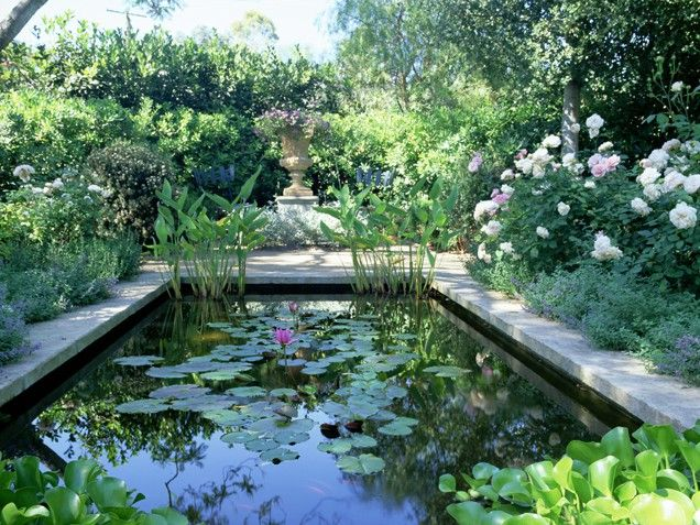 Water Garden Water Ways If A Pond Or Fresh Water Area Ocupies A Majority Of Your