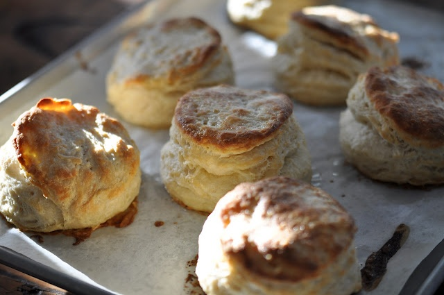 Buttermilk Biscuits | Baking Goddess | Pinterest