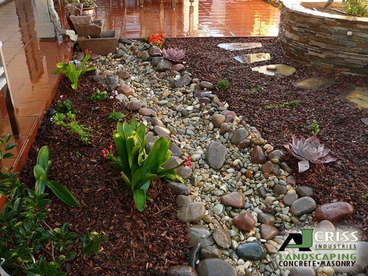 Xeriscaping Backyard Landscaping Ideas : Cool xeriscape  Landscaping  Pinterest