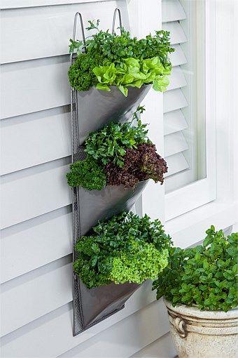garden metal wall planter balcony garden pinterest. Black Bedroom Furniture Sets. Home Design Ideas