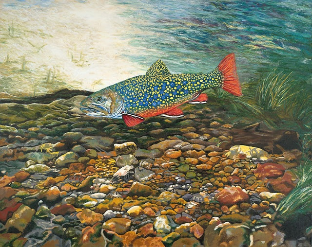 Mountain stream fish hunting fishing pinterest for Fish and stream
