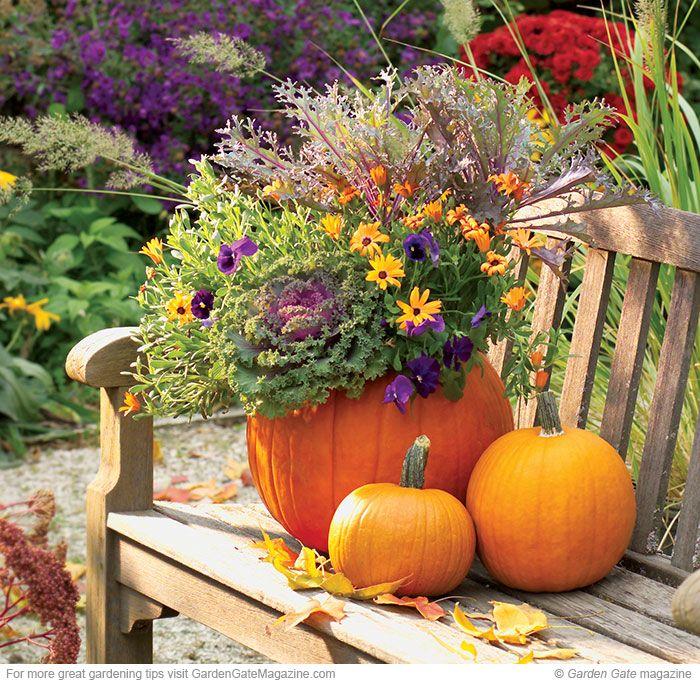 Pumpkin planter - Decoration de citrouille originale ...