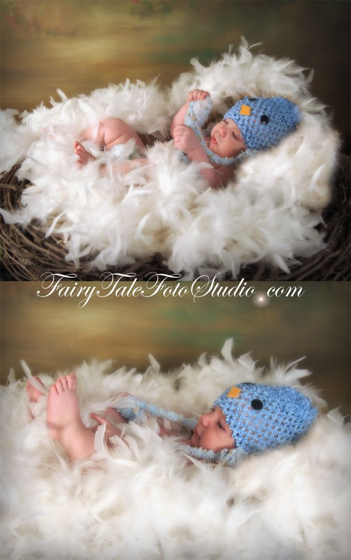 Just kids photography baby bluebird in a nest 3 month old baby boy baby bluebird in a nest springtime newborn blue bird hat spring time easter fairytale negle Images