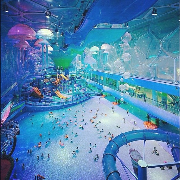 Theme Park Swimming Pool Pooltastic Pinterest