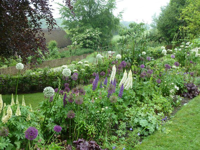Garden Borders Inspiration : Pin by donna iorio on garden