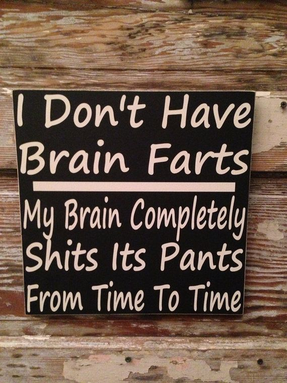 I Don't Have Brain Farts, My Brain Completely Shits Its Pants From Time To Time. ;D LO