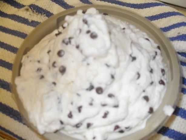 Easy Mint Chocolate Chip Ice Cream | Recipe