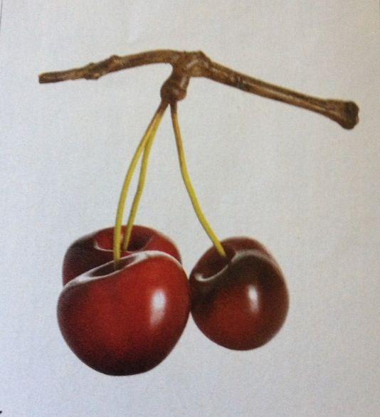 Bing Cherries | Favorite | Pinterest