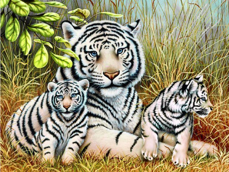 Алмазная вышивка бенгальские тигры 29