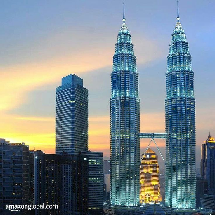 Facts About The Petronas Twin Towers Twin Towers Malaysia Facts