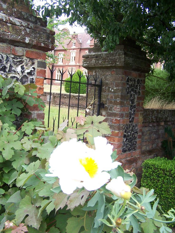 Beautiful Garden Summer 2013 I Love Engeland Pinterest
