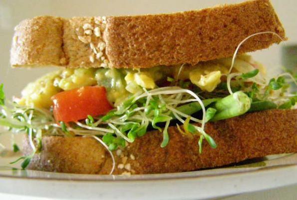 Mock Tuna Salad | Patty's Plant Based Sammies, Wraps & Burgers Likes ...