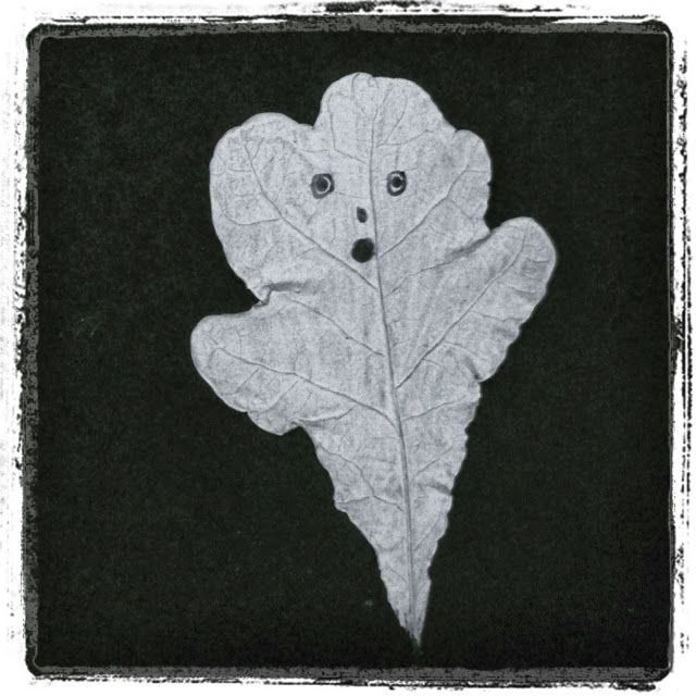 Oak leaf ghost by Hazel Terry - inspiration for the little ones.