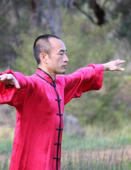Ziran-qigong classes Melbourne | Tai Chi-Qigong | Pinterest