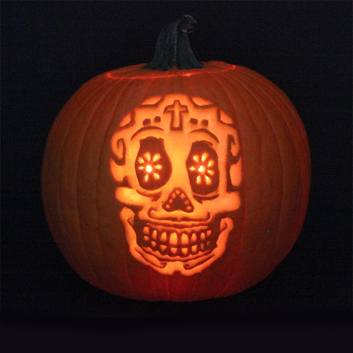 Pin by shea creative on pumpkins pinterest