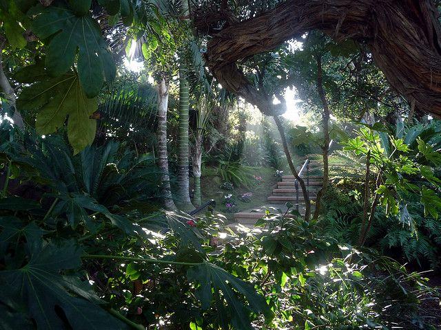 Sun Shadows Meditation Gardens Self Realization Fellowship Encinitas Ca Meditation