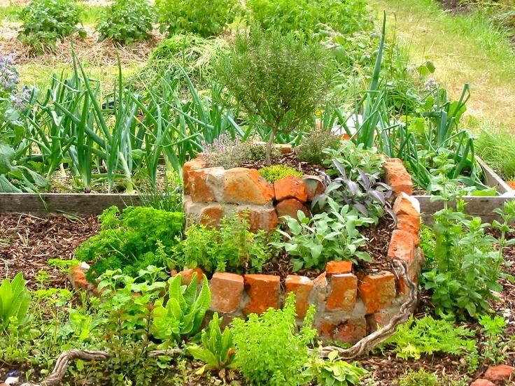 Allotment inspiration allotment ideas pinterest for Garden allotment ideas