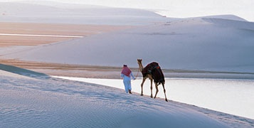 Arabian Night Safari (Overnight safari with dinner) USD 150 per person