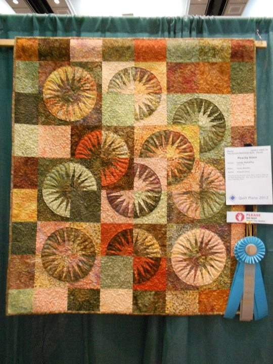 Desert Sky~Quiltworx.com  Made by Candy Mahaffey  This is a photo of my Desert Sky quilt that I made in a workshop with Eileen Urbanek at Quilt Country in Lewisville, Texas.  It earned an Honorable Mention at the Plano Quilt Show last weekend.  It the first time I entered at Master category.