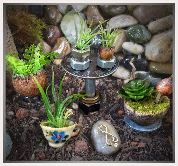 Miniature plants fairy house accessory fairy gardening - Miniature fairy garden plants ...