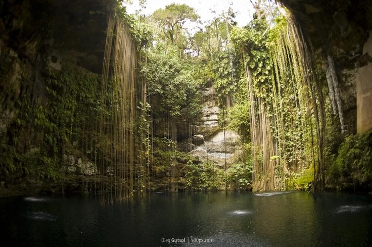 Fotos De Cenotes En Nuestro Yucatan  Tattoos Pinterest