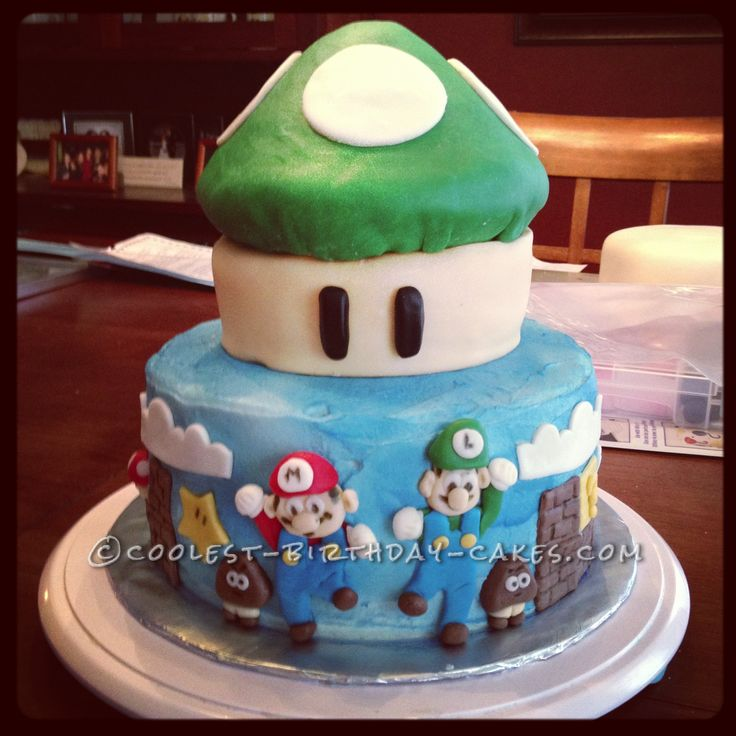 Coolest Mario Brothers Birthday Cake... This website is ...