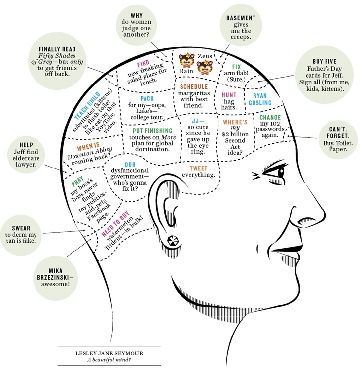 inside a woman u0026 39 s brain