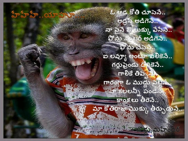 monkey love poem Funny birthday messages, like birthday wishes, birthday quotes, birthday poems and birthday toasts, are only funny if they make the ones you love laugh at themselves in a certain way what way what way.