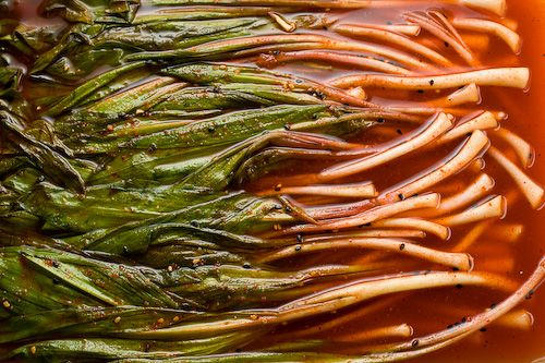 "David Chang's Pickled Ramps | Pickles, Preserves & ""Home Made ..."