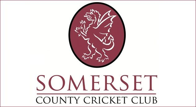 Image result for kwik cricket somerset county cricket clib