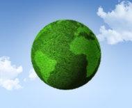 Top 10 Green Companies