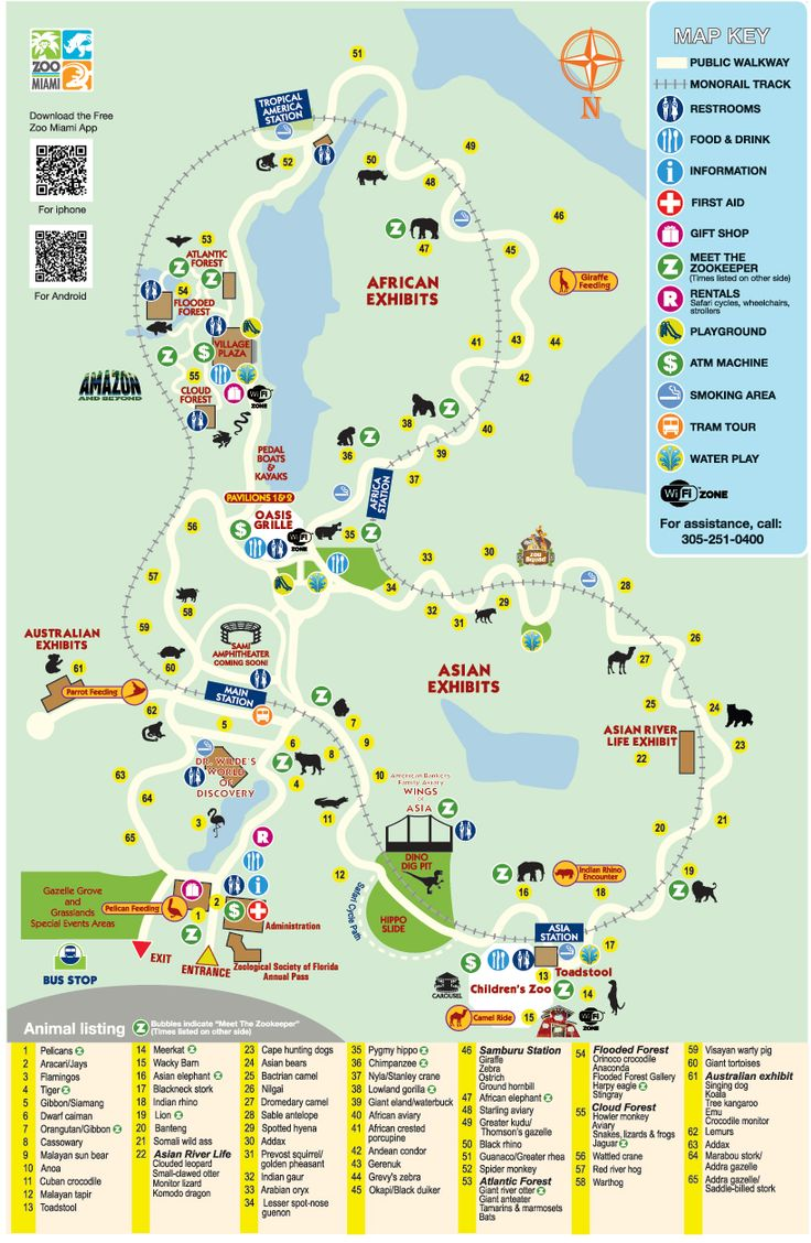 Miami Zoo Map Bing Images