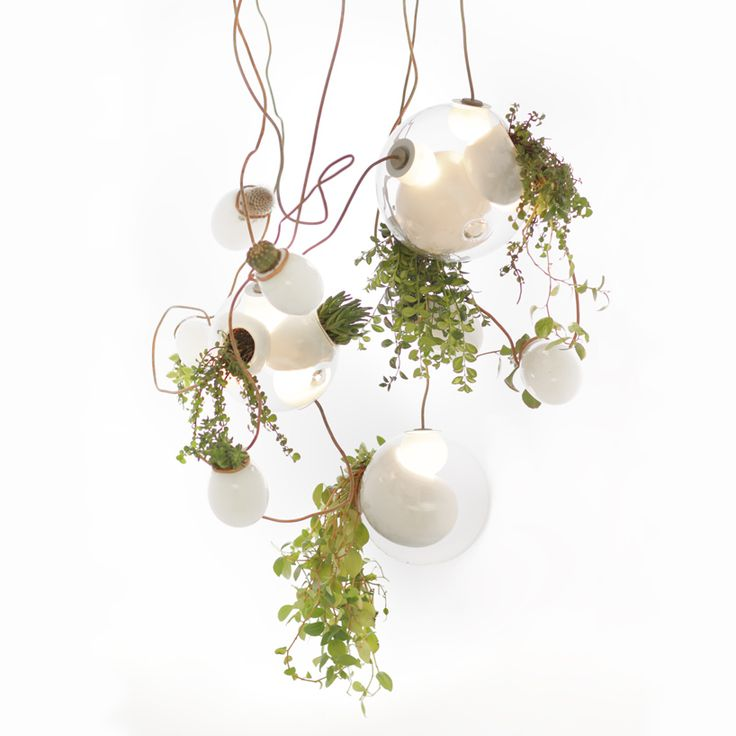 planter chandelier. Can't buy one but should be easy enough to replicate.
