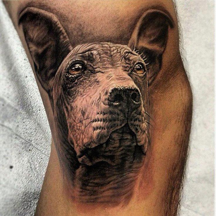 Tattoo Inspiration  Animal Pinterest